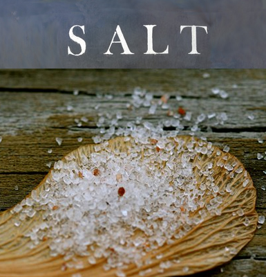 Salt Cafe in Montpelier